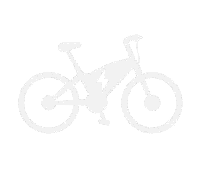 Electric Bicycles (e-bike)